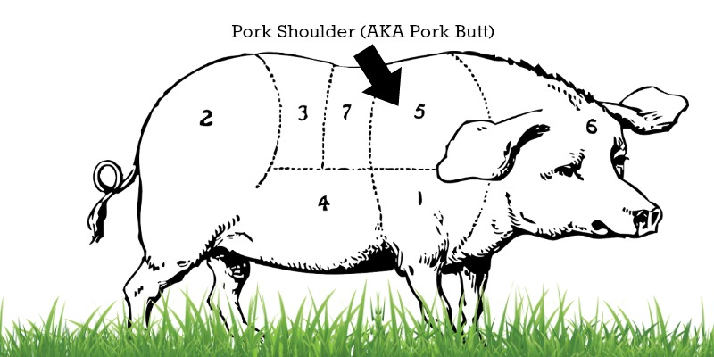 diagram of pig